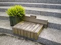 Wood seats on stairs with plant pot located in taipei park Stock Photo