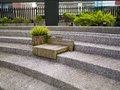 Wood seats on stairs with plant pot located in taipei park Royalty Free Stock Photography