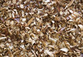 Wood shavings texture a flat view of a dense collection of various Stock Photography