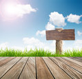 Wood sign fresh spring green grass with blue sky and wooden floor sun light Stock Photos