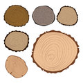 Wood slice texture tree circle cut raw material set detail plant years history textured rough forest vector illustration
