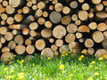 Wood stacked in a heap at each other on the grass Royalty Free Stock Images
