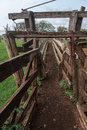 Wood staket farm rio grande do sul Arkivbilder