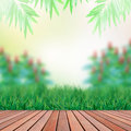 Wood terrace and green garden backgroundwood terra Stock Image