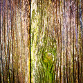 Wood texture background closeup old wood planks Royalty Free Stock Photos