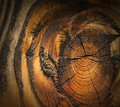 Wood texture background dark brown Stock Photos