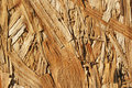 Wood texture background design Stock Images
