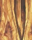 Madera textura13