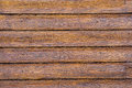 Wood texture. background panels planks paint lacquer Royalty Free Stock Photo