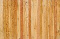Wood texture in detailed zoom Royalty Free Stock Photo