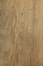 Wood Texture Elm Abstract Natural Grain Pattern for Background I Royalty Free Stock Photo