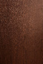 Wood texture the fine grained of the tree close up Stock Photography