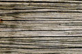 Wood texture with nature form Royalty Free Stock Photo