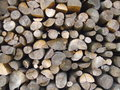 Wood texture w the stored at each other in a pile Stock Images