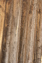 Wood texture with wood's grain. Royalty Free Stock Image