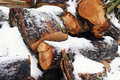 Wood under the snow Royalty Free Stock Photo