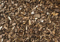 Woodchip natural texture background tree bark Royalty Free Stock Photography