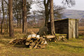 Woodcutters Hut and Timber Royalty Free Stock Image