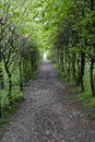 Wooded path Royalty Free Stock Photo