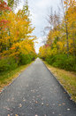 Wooded Paved Path Royalty Free Stock Photo