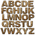 Wooden alphabet. Stock Images