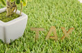 Wooden alphabetical tax word on artificial green grass in the pot left Stock Photo