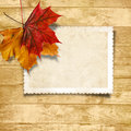 Wooden background with autumn leaves and old card cards for text or photo Royalty Free Stock Images