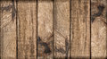 Wooden background. Teak oak olive wood texture surface Royalty Free Stock Photo