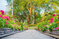 Wooden bamboo path way with beautiful flowers Royalty Free Stock Photo