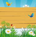 Wooden banner in the grass Royalty Free Stock Image