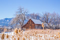 Wooden barn in a snow-covered open space Royalty Free Stock Photo