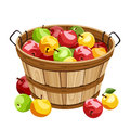 Wooden basket with colorful apples. Royalty Free Stock Photo