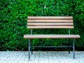 Wooden bench and green leaves wall background Royalty Free Stock Photo
