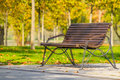 Wooden bench in the park with beech hedge break Royalty Free Stock Photo
