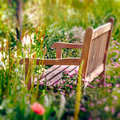 Wooden Bench in a wildflower garden. Square composition Royalty Free Stock Photo