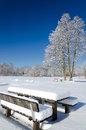 Wooden benches covered by snow Royalty Free Stock Photo