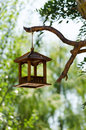 Wooden bird feeder on the brunch of the tree Stock Photo