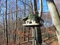 Wooden bird feeders in the autumn park.