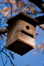 Wooden birdhouse on a tree. Royalty Free Stock Photography