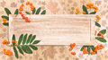 Wooden board with autumn decorations on natural background decorated rowan tree berries and leaves copy space Royalty Free Stock Photo
