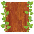 Wooden board with green leaves Stock Photo