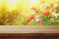 wooden board table in front of summer flowers field Royalty Free Stock Photo