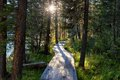 Wooden boardwalk along the lake in the mountains rakhmanovskoe east kazakhstan altai Stock Photography