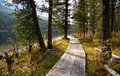 Wooden boardwalk along the lake in the mountains rakhmanovskoe east kazakhstan altai Royalty Free Stock Photography
