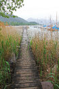 Wooden boardwalk through the reed lake tegernsee bavaria Stock Images