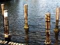 Wooden Boat Dock Pole Bumpers Royalty Free Stock Photo