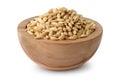 Wooden bowl of barley grains Royalty Free Stock Photo