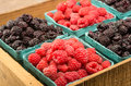 Wooden box with baskets of berries a red raspberries and black raspberries Stock Image