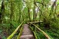 Wooden Bridge At Angka Nature ...