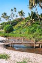 Wooden  bridge cross a small river on Goa coast Royalty Free Stock Images